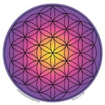 Vindus pynt, Flower of Life lilla sticker