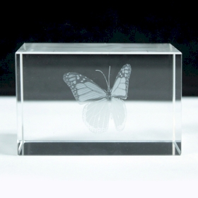 Laser Crystal Block - Butterfly